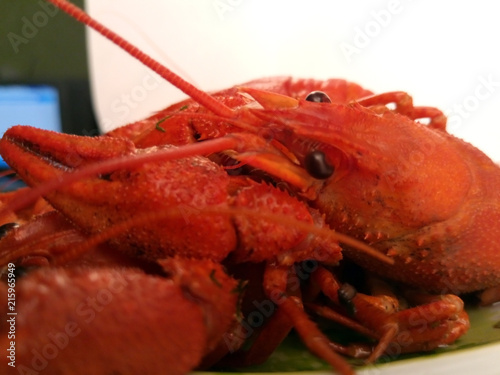 Fotografie, Obraz  food. boiled cancer. Crustacea is bright red.