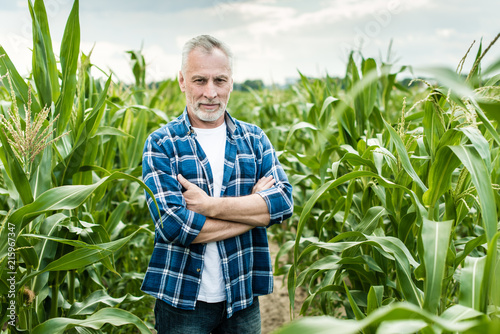 Obraz na płótnie Senior farmer standing in a corn field
