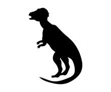 Pachycephalosaurus Silhouette ...
