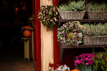 Autumn Decoration With Pumpkins And Flowers At A Flower Shop On A Street In A European City