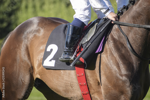 Valokuva jockey in the saddle at a horse race with the starting number two