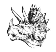 Sketch Of A Dinosaur Head With...