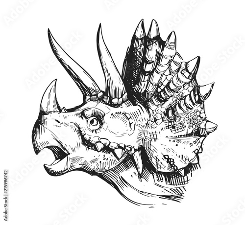Fotografie, Obraz Sketch of a dinosaur head with an open mouth