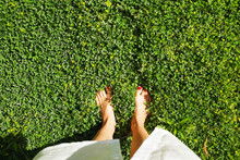 Close Up Of Barefoot Young Woman W/ Clean Shaved Feet Standing On Juicy Green Grass Lawn. Smooth Sexy Female Legs Outdoors, Walk In The Park. Varicose Veins Medicine Concept. Background, Copy Space.