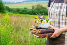 Woman Holding In Her Hands Books, A Mortar And Magnifying Glass. Herbalist Collects Medicinal Plants On A Meadow.