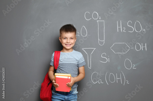 Fotografia  Little child with school supplies and chemical formulas on grey background