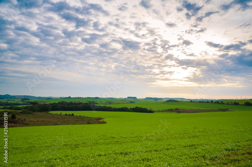 Poster Donkergrijs Beautiful landscape of green field and cloudy sky
