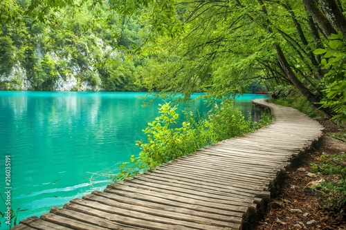 Canvas Prints Green coral Beautiful lake in Plitvice National Park