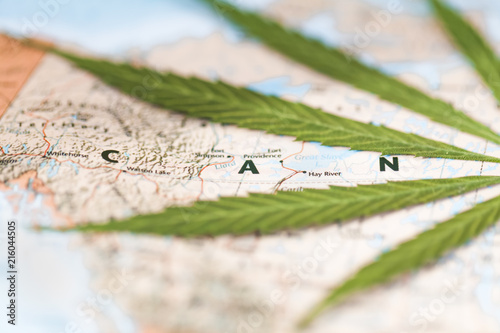 Spoed Foto op Canvas Canada cannabis leaf on the world map Canada