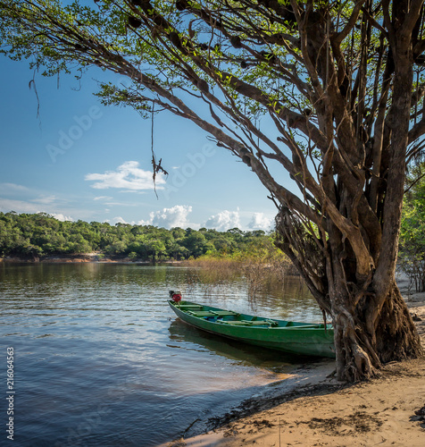 Fotografie, Obraz  Flat river boat on shore of Rio Negro, Manaus, Brazil.CR2