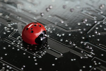 Computer Bug, Failure Or Error Of Software And Hardware Concept, Miniature Red Ladybug On Black Computer Motherboard PCB With Soldering, Programmer Can Debug To Search For Cause Of Error