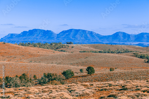 Foto op Aluminium Zalm Beautiful landscape of Flinders Ranges mountains and rolling hills in South Australia