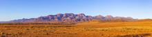 Large Panorama Of Flinders Ranges In South Australia