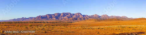 Wall Murals Blue sky Large panorama of Flinders Ranges in South Australia