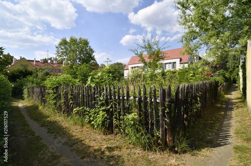Staande foto Tuin ドイツの田園都市(ベルリンのモダニズム集合住宅群):ガルテンシュタット・ファルケンべルク