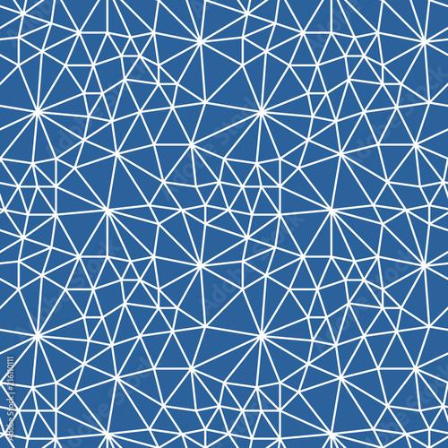 Fototapety geometryczne pajeczyna-wektorow