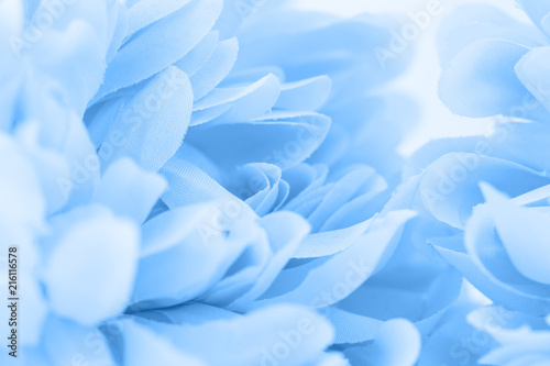 Beautiful blue flowers made with color filters, soft color and blur style for ba Canvas Print