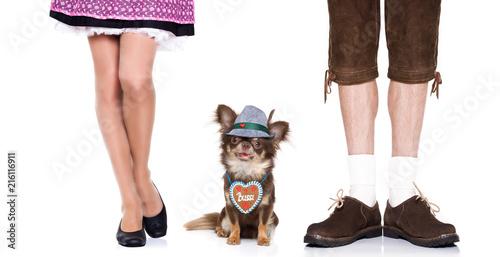 Keuken foto achterwand Crazy dog bavarian beer dog