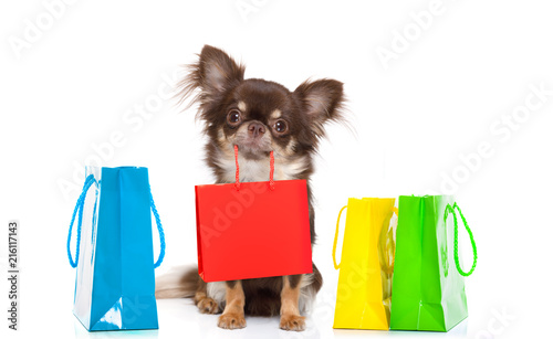 Poster Crazy dog shopping dog with bag