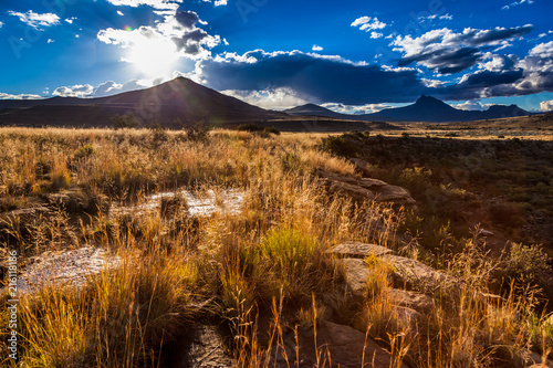 Cuadros en Lienzo The afternoon sun lights up the winter grass in the Karoo near Nieu Bethesda, South Africa