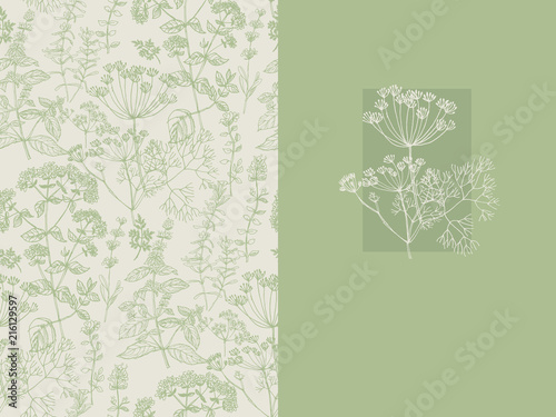 Fototapeta Elegant classic herbal seamless pattern obraz