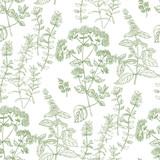 Ręcznie rysowane szkic ziołowy wzór dla tkaniny - 216129768