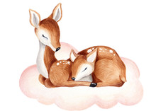 Baby Deer Watercolor Summer, Autumn Illustration