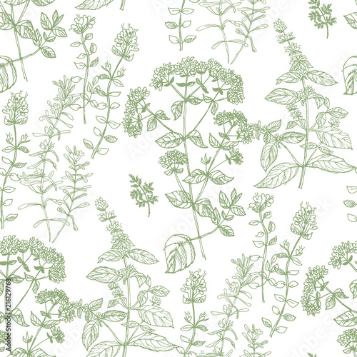 Valokuva  Hand drawn herbal sketch seamless pattern for fabric