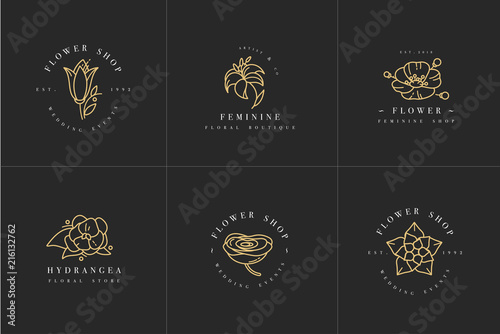 Vector feminine signs and logos, templates set Wallpaper Mural