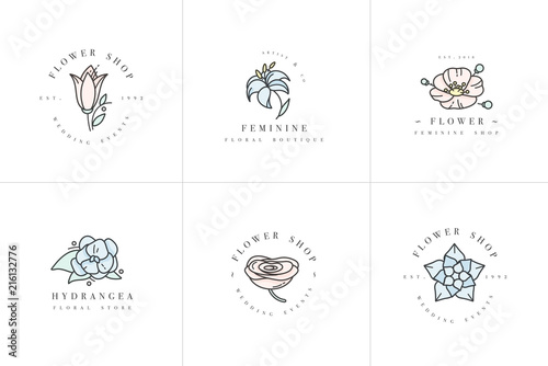 Fotografia Vector feminine signs and logos, templates set
