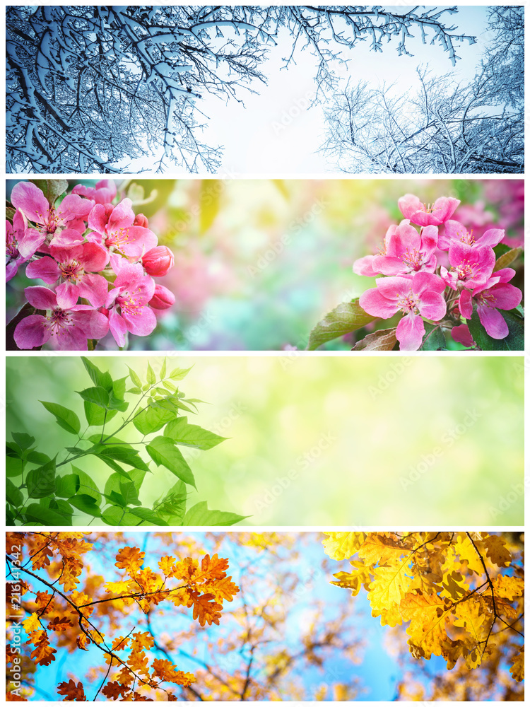Fototapeta Four seasons. A pictures that shows four different pictures representing the four seasons: winter, spring, summer and autumn.