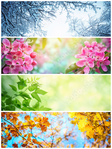 Four seasons. A pictures that shows four different pictures representing the four seasons: winter, spring, summer and autumn.