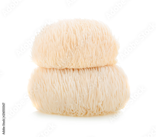 Lion mane mushroom isolated on white background Fototapeta