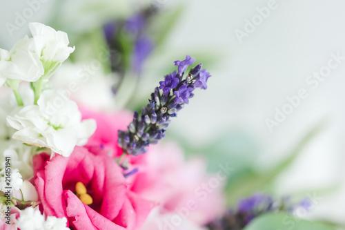 In de dag Lavendel Brin de lavande