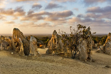 The Pinnacles At Sunset, Nambu...