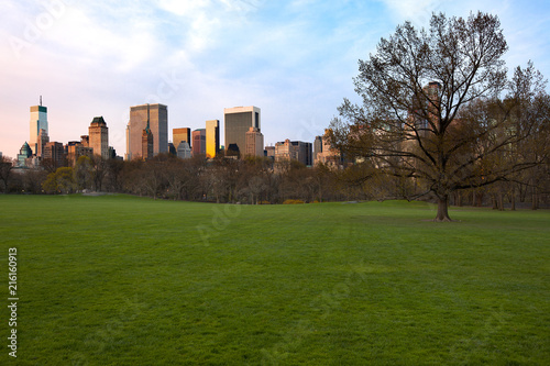 Keuken foto achterwand Verenigde Staten Sheep Meadow at Central Park and Midtown skyline, New York City, NY, USA
