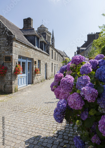 geranium and houses in brittany
