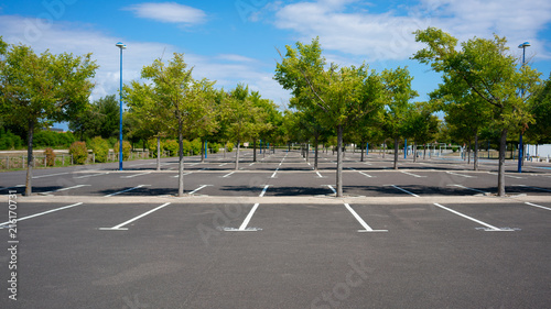Empty Parking lot with trees on sunny summer day Slika na platnu