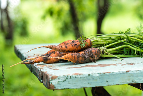 Poster Chamaleon Fresh carrots with a bat-tree on a wooden old table