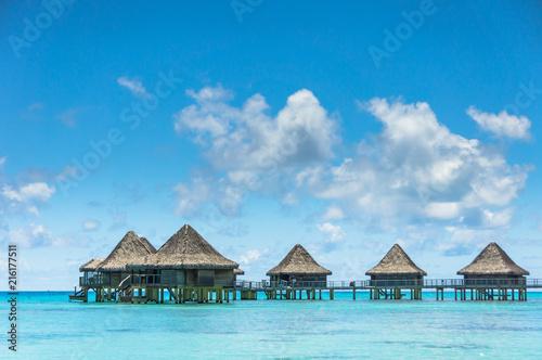 Poster Oceanië Paradise view of Rangiroa atoll, French Polynesia