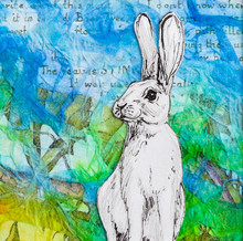 White Rabbit Drawing On Colour...