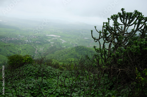 Tuinposter Khaki Lush green monsoon nature landscape mountains, hills, Purandar, Maharashtra, India