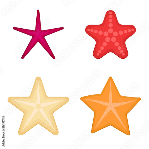 Starfish set on a white background. Vector Wallpaper Mural
