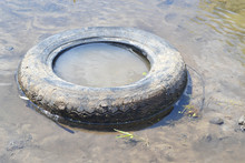 The Old Dirty Tire In The Swamp.