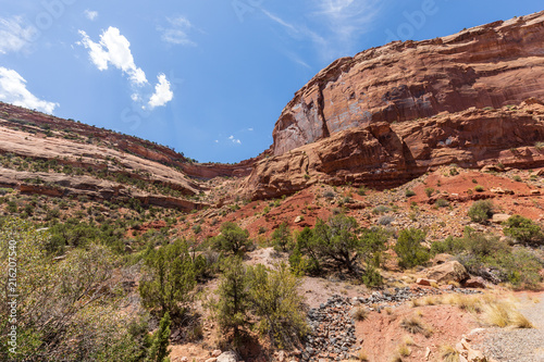 Deurstickers Zalm Scenic Colorado National Monument Landscape