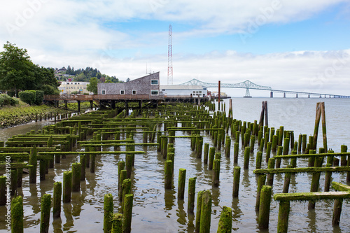 Old pier covered in moss in Astoria, Oregon. Canvas Print