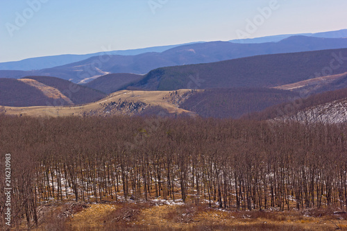 Mountainous landscape of West Virginia countryside in winter, USA Wallpaper Mural