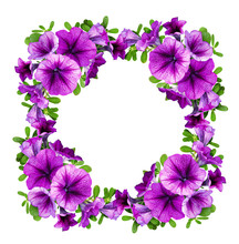 Purple Petunia Flowers In A Floral Frame