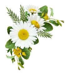 Daisy flowers and wild grass in a summer corner arrangement
