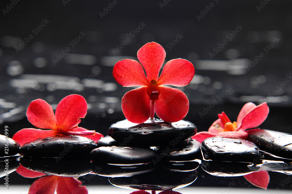 Still life with red orchid with therapy stones